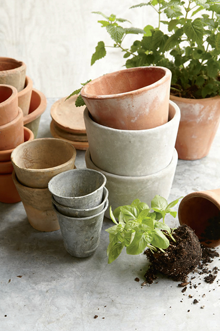 Porous terra-cotta pots allow air and moisture to penetrate
