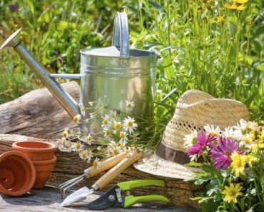 Herb Gardening to-do List by Season