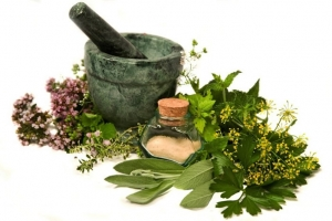 Exploring The World Of Herbs