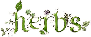 Herbs Tips