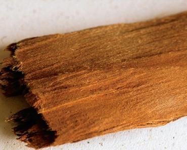 Ephedra (ephedra sinica)